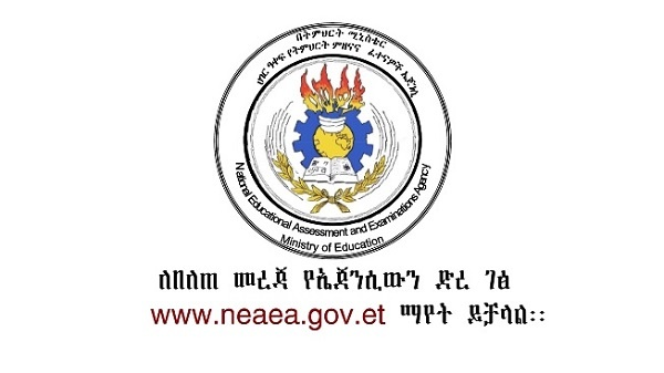 NEAEA: The 2019 Grade 12 Exam Results Released